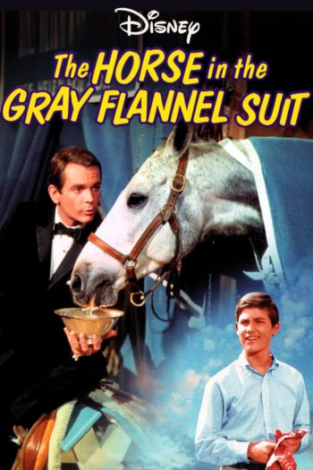 Film The Horse in the Gray Flannel Suit online